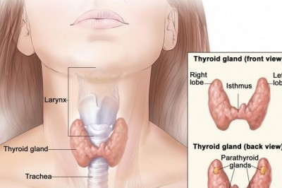 Thyroid Storm-The Life Threatening Disorder