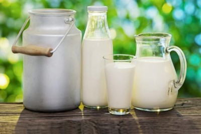 Fresh Milk is good for Protecting Allergy and Asthma, yet is it Safe?