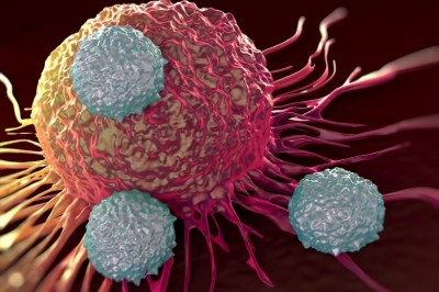 A new study finds, Poliovirus can kill cancer cells and stop tumor expansion